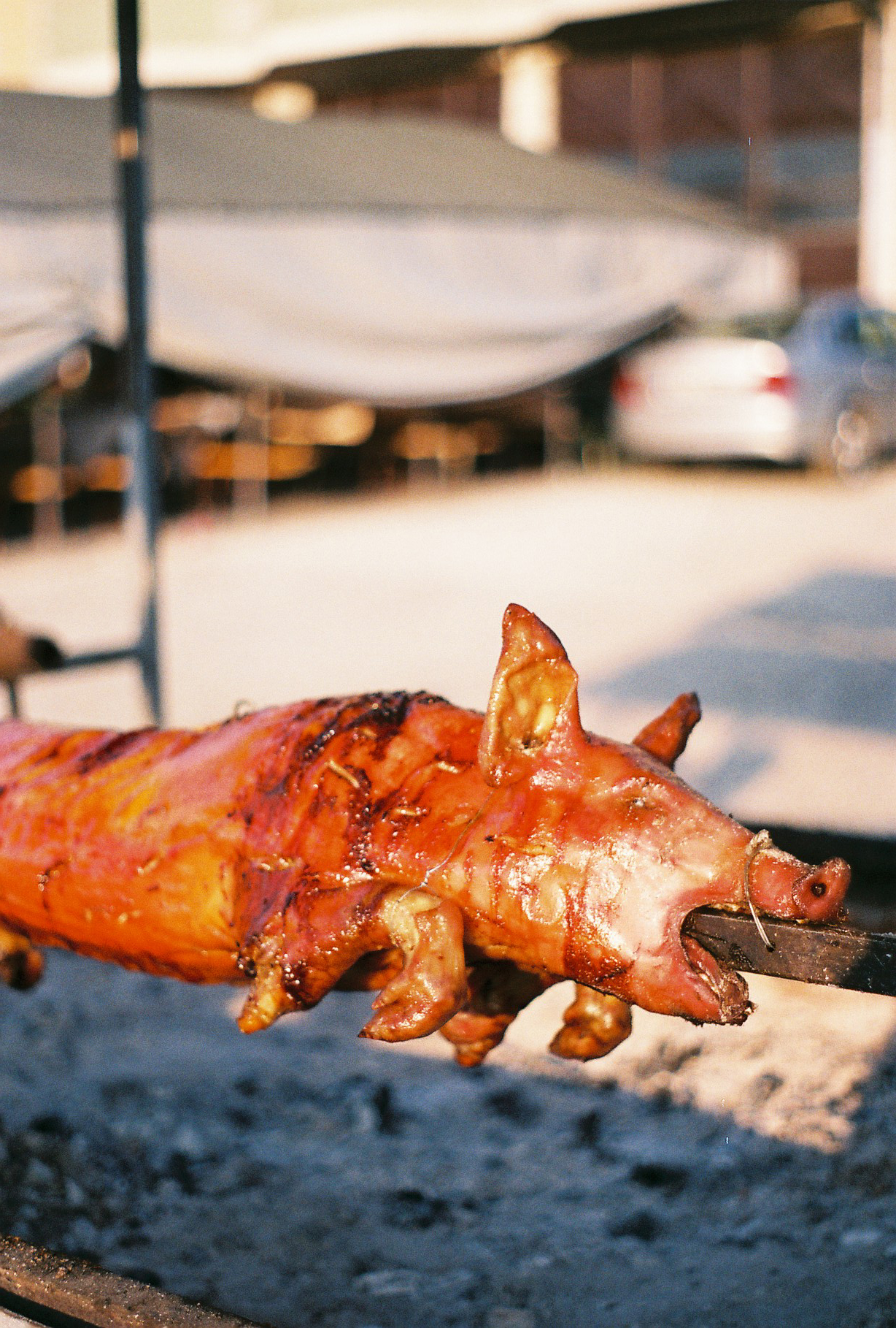Pig on a Spit at Guca
