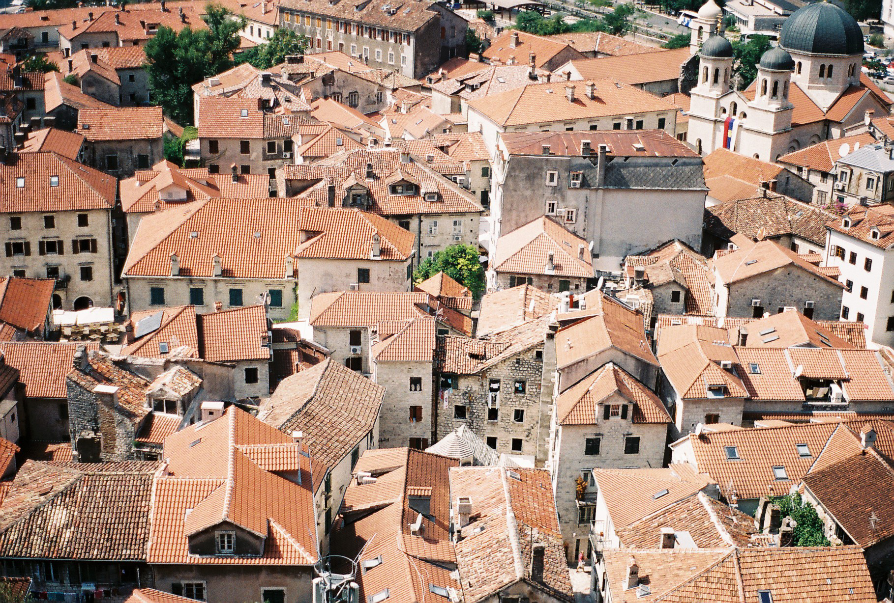 Red Roofs of Kotor